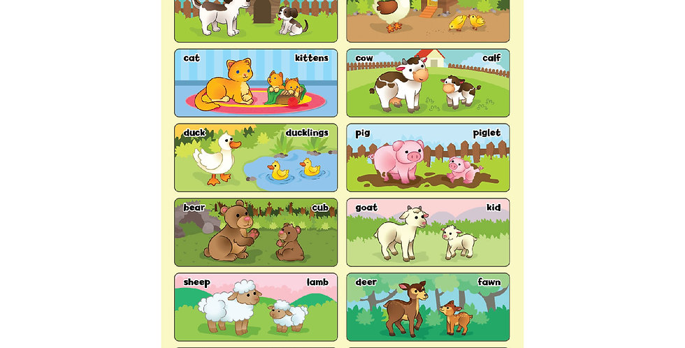 Mothers and Babies Animal Poster