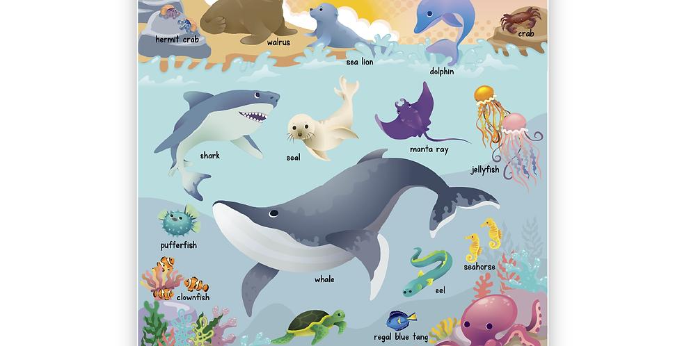 Sea Animals Poster