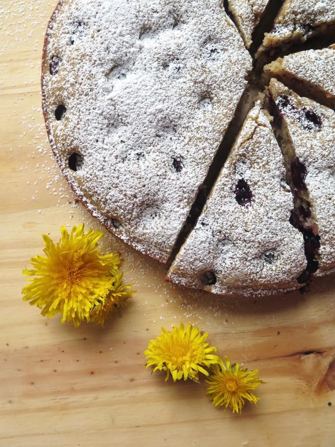 Blueberry Poppy Seed Spring Cake