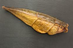 Golfstrimfish3