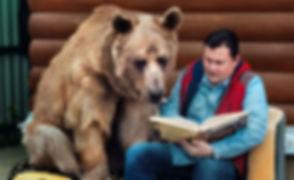 bear reading.jpg
