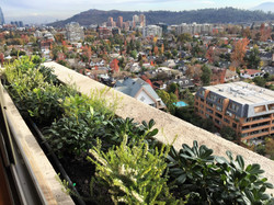 Proyecto jardineras Vitacura
