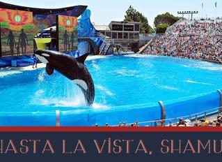 Hasta La Vista, Shamu!
