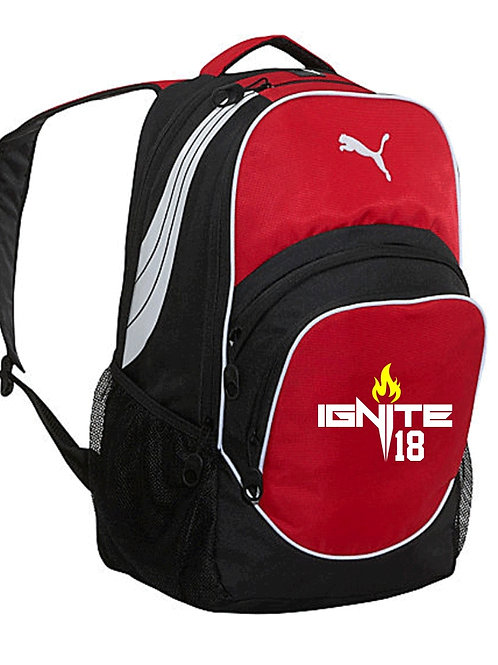 PUMA TeamSport Ball & Gear Backpack