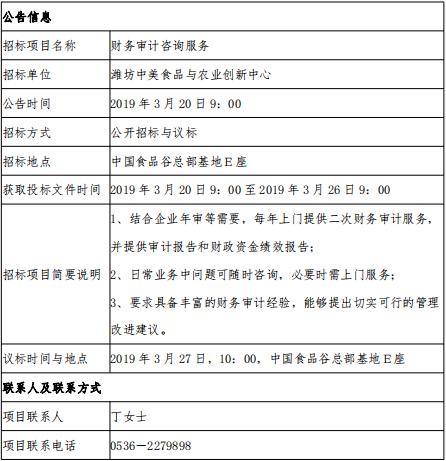 财务审计咨询公开招标公告