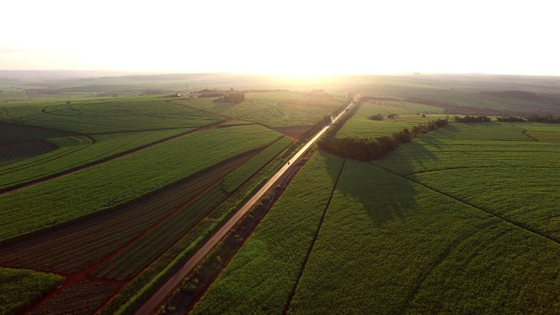 Syngenta to Acquire Brazilian Farm Management Software Strider as Competition Heats Up in Latin Amer