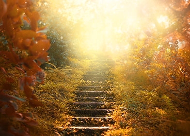 At Kintsugi Health we will guide you through the steps of treatment.