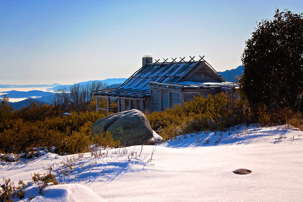 Craigs in snow 2015 Shez IMG_0035.jpg