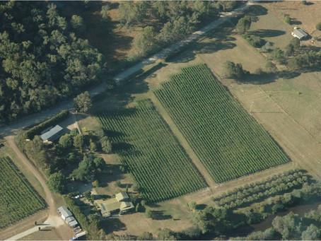 An aerial view...