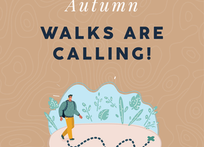 Autumn Walks are Calling!