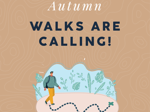 Autumn Walks are Calling!