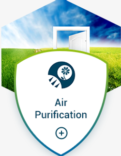 air purification disease virus bacteria infection control