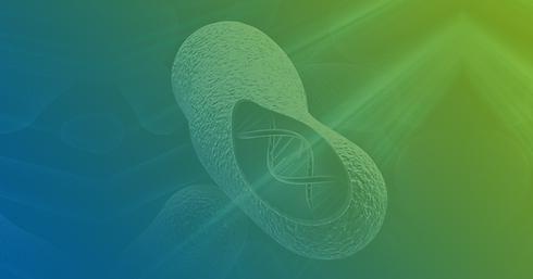 Vitec Nano Shield