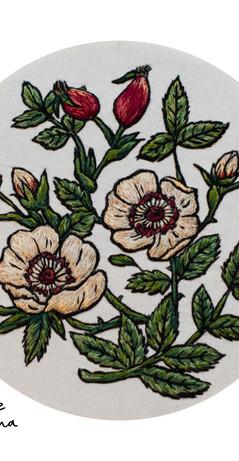 Dog Rose Print (small).jpg