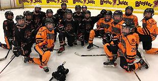 Hockey Skill Development