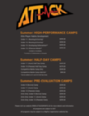 Attack Prices copy.png