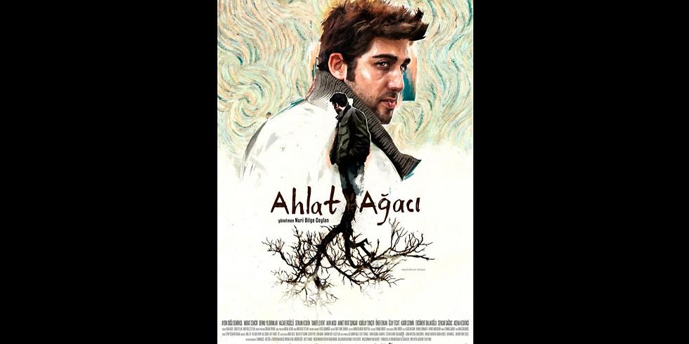 The Wild Pear Tree (Turkey) - Cinema Eclectica!