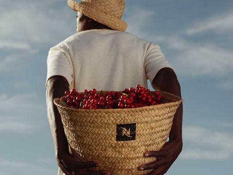 Reviving Origins: Nespresso восстанавливает уникальные кофейные плантации