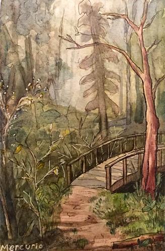 wheaton woods watercolor