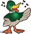 Odd Duck Vibes
