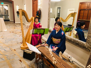 Harp & Koto in Newport Beach