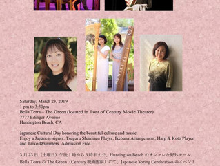 Japanese Spring Cerebration Event