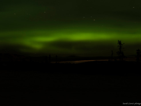 Northern Lights dancing in the sky as we are driving into a New Year - Happy 2017
