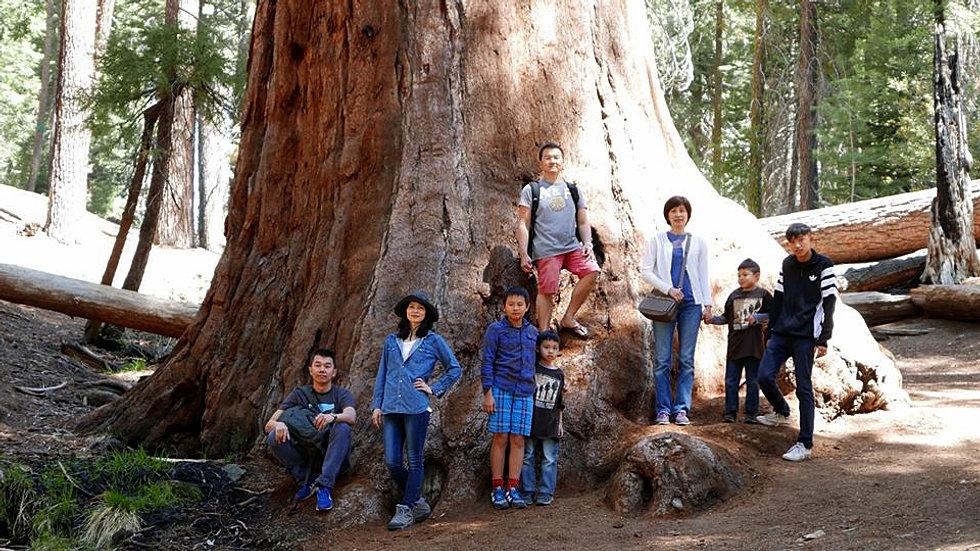 montecito sequoia lodge  u0026 summer family camp