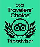 2021 Tripadvisor Travelers Choice Award Logo.png