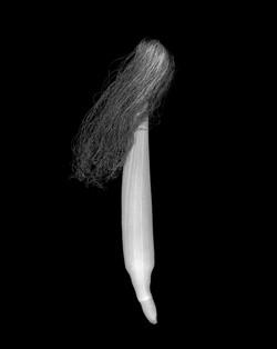 ©Les Nivaux - Sentiment végétal