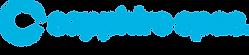 logo-sapphire.png