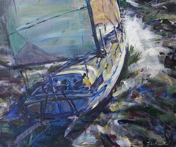 Skimming the Waves -  John Hamilton