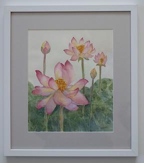 Lotus Flowers -  Sara Smith