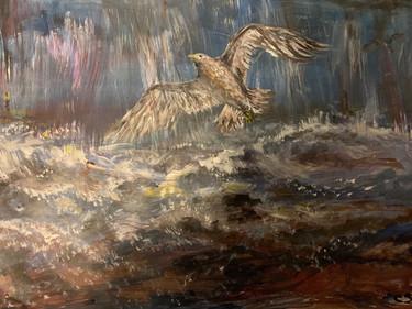 Seagull -  Caroline Anderson-Jones