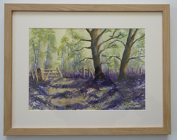 Bluebell Wood -  Sara Smith