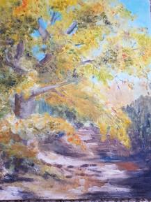 Footpath in Sandhurst -  Wendy Phillips