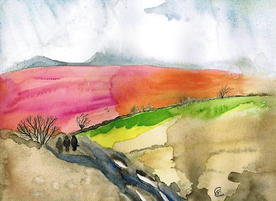 Walk Across the Moor