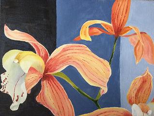 Cymbidium orchid.JPG