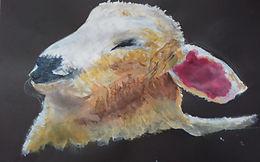 'Animals' Art Workout 4th June 2020