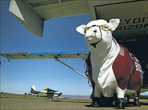 ruofs plane