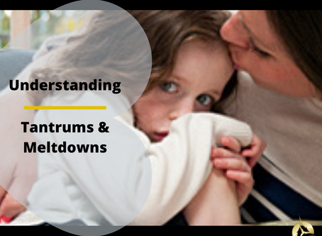 Parents - Meltdowns & Tantrums - Understand them and discover how to regulate them