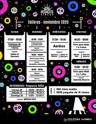 grilla_noviembre_2020.png