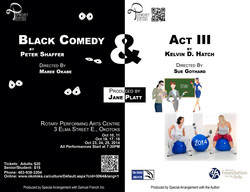 Black Comedy & Act III Fall 2014