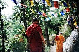 two-monks-walking-between-trees-750895.j