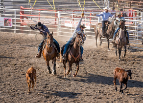 Beaverhead County Fair Picture Gallery For Friday 09/04/2020