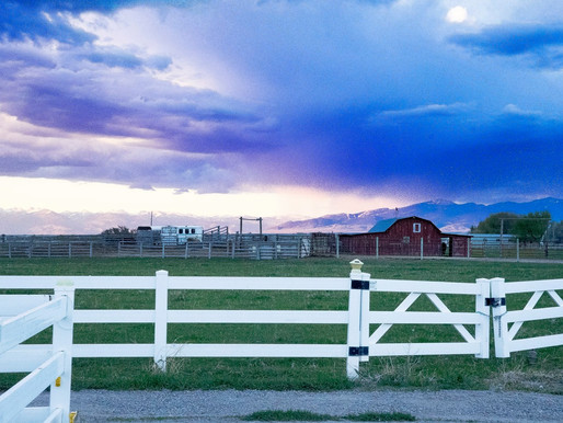 MT Film Office Looking For Ranch Or B&B To Film At In July