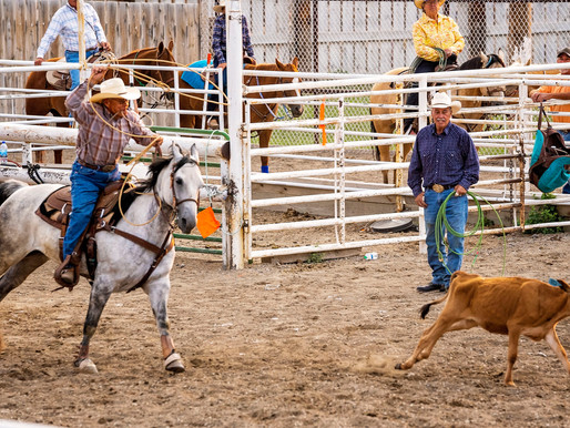 Dillon Territorial Rodeo Going On All Weekend