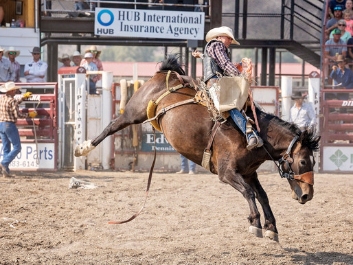 Day 2 Of The Dillon Jaycee PRCA Rodeo With Picture Gallery & Standings