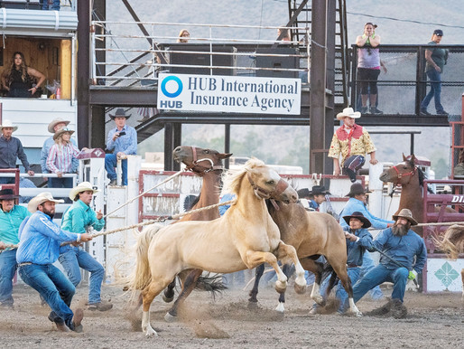 Dillon Jaycee PRCA Rodeo Day 1 Standings & Picture Gallery