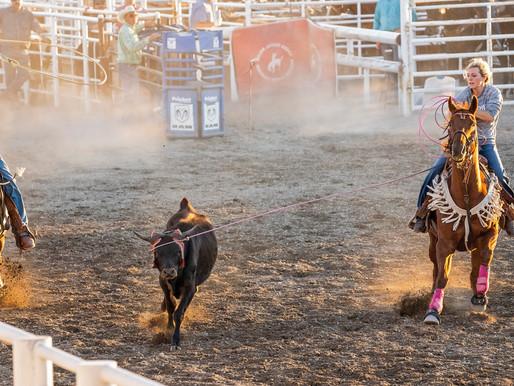 Photo Rundown for Beaverhead County Fair Thursday 09/03/2020